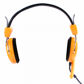 Glife 2-Pin Headphones with Mic & Volume Control, G-601