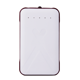 Bison 30,000mAh Power Bank For Smartphones & Tablets, BS-100
